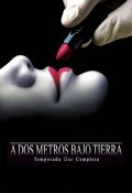 A dos metros bajo tierra Temporada 1 - dvd 3