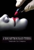 A dos metros bajo tierra Temporada 1 - dvd 5