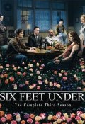 A dos metros bajo tierra Temporada 3 - dvd 4